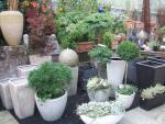outdoorgefaesse pflanzen