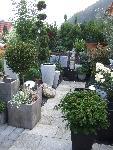Wintergartenbegrünung geislingen